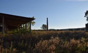 Sheshi ku dikur gjendej rafineria e Cërrikut, një kompleks prej mijëra tonësh hekur, çelik dhe metalesh të tjera, fotografuar në tetor 2015. Foto: Gjergj Erebara/BIRN
