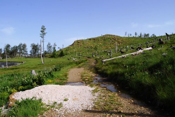 Parku kombëtar Lurë | Foto nga : Lindita Çela