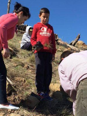 Vullnetarë duke mbjellë fidanë në Lurë